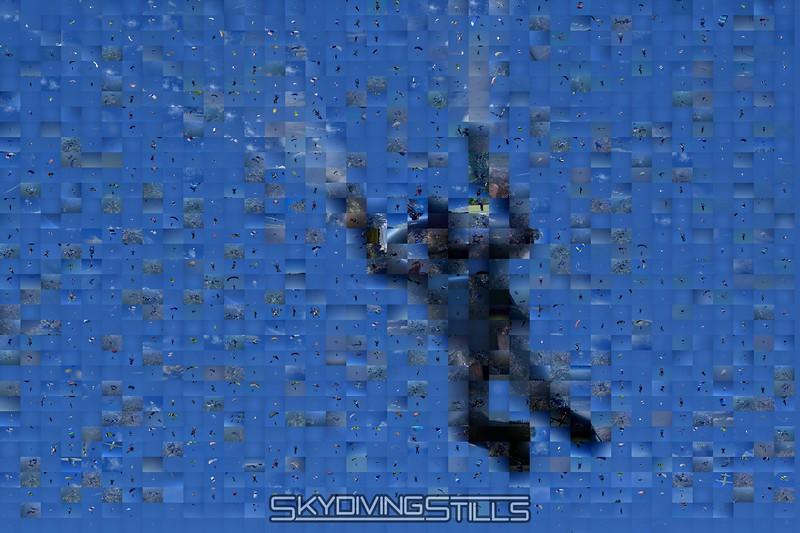Mosaic: Jay.