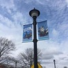Lamp posts all over UConn. Photo by Doug H.