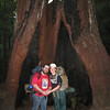 End of the second day, standing in the hollow of a giant redwood tree.