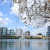 Morning view of beautiful Lake Eola Park situated in the heart of downtown Orlando, Florida.