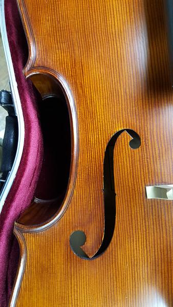 Skylyr Cieply's Cello