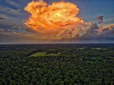 East Texas Thunderstorm