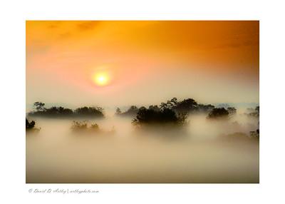 Sunrise through Potomac River fog, Point of Rocks, MD