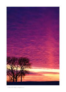 Last rays of Winter sunset, Dike, IA