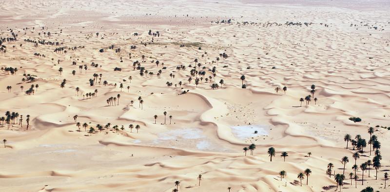 Desert landscape on the edge of the Grand Erg Occidentale in Interior Algeria