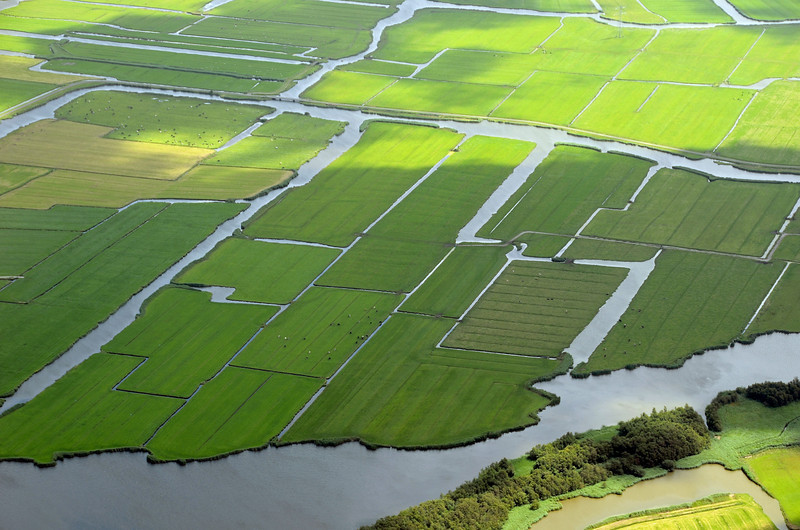 Patchwork of fields, The Netherlands