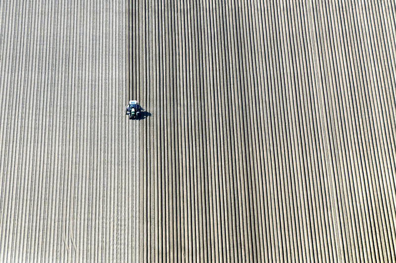 Linear plowing in the Zuid Flevoland polder, The Netherlands