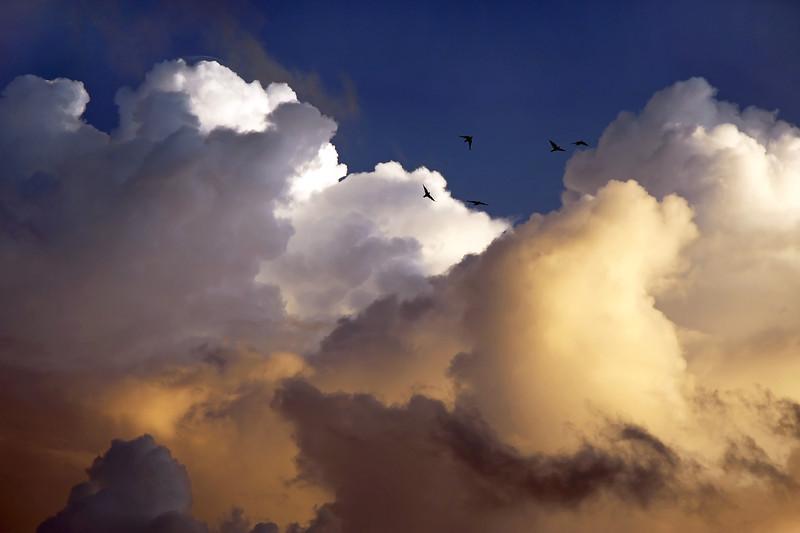 Early morning thunderstorm, Bonaire