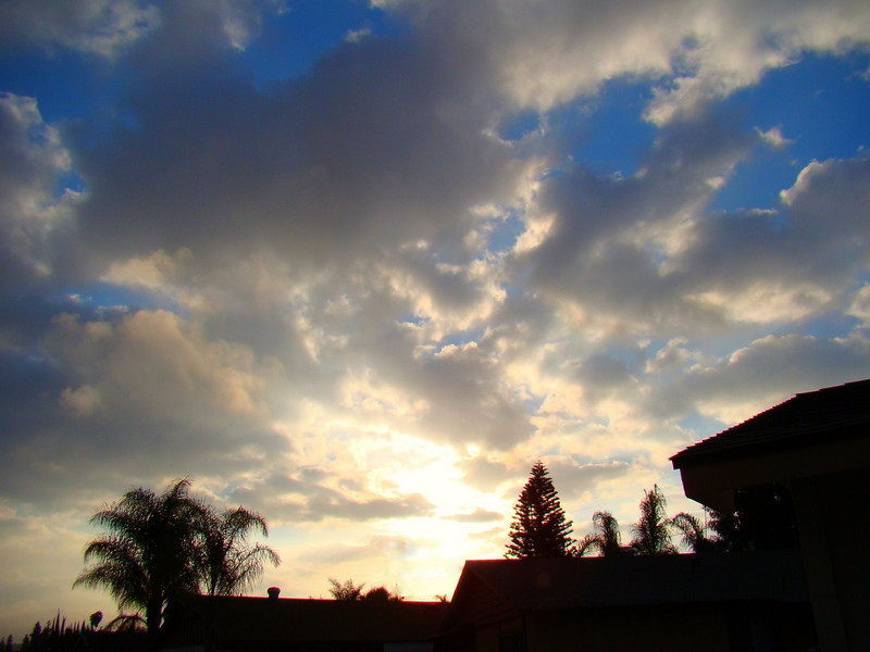 Morning sunrise from our driveway in Rowland Heights, CA