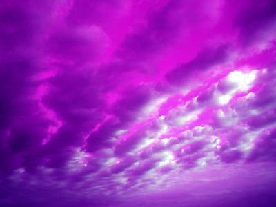 Hand Above Ontario Purple