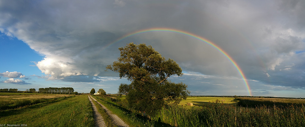 Rainbow Havelland marshes, July 201