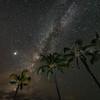 Milky Palms