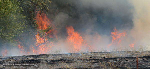 A fire scorches several acres Friday, July 22, 2016, near Butte Creek and the Skyway in Chico, California. The fire began when a tractor trailer knocked power lines down. (Dan Reidel -- Enterprise-Record)