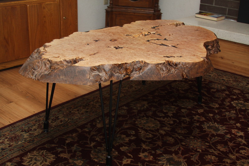 Maple Burl coffee table with hairpin legs