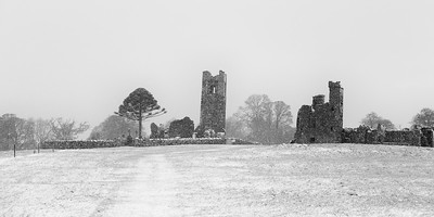A Winter's Day at Slane-MG_3030