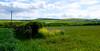 Polia a pastviny