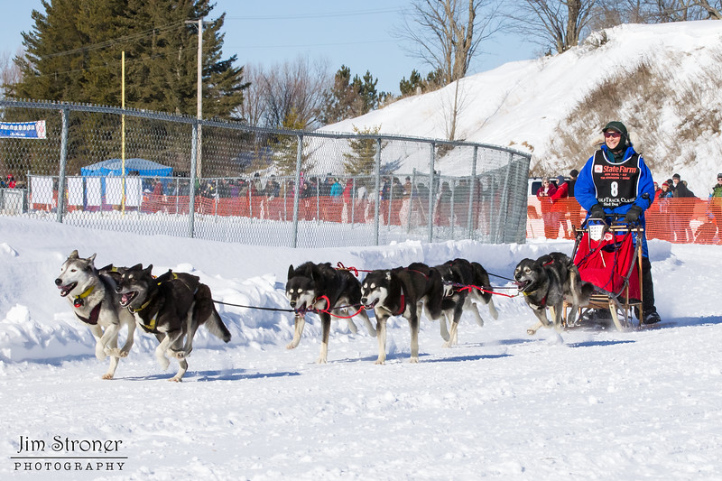 Ann Stead's 6-dog team near the start of the 2013 WolfTrack Classic