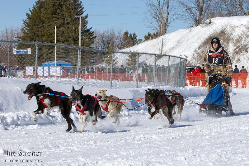 Brenden Schneider's 6-dog team near the start of the 2013 WolfTrack Classic