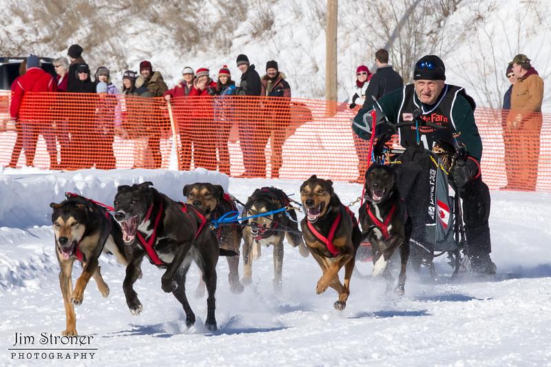 Clayton Schneider's 6-dog team near the start of the 2013 WolfTrack Classic