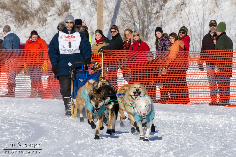 David Perron's 10-dog team near the start of the 2013 WolfTrack Classic