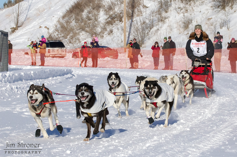 Jennifer Freking's 10-dog team near the start of the 2013 WolfTrack Classic