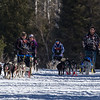 Heather Jeske Pharr, Dusty Klaven, Julie Schmeizer and Josh Hudachek along the trail near Bear Head Lake State Park