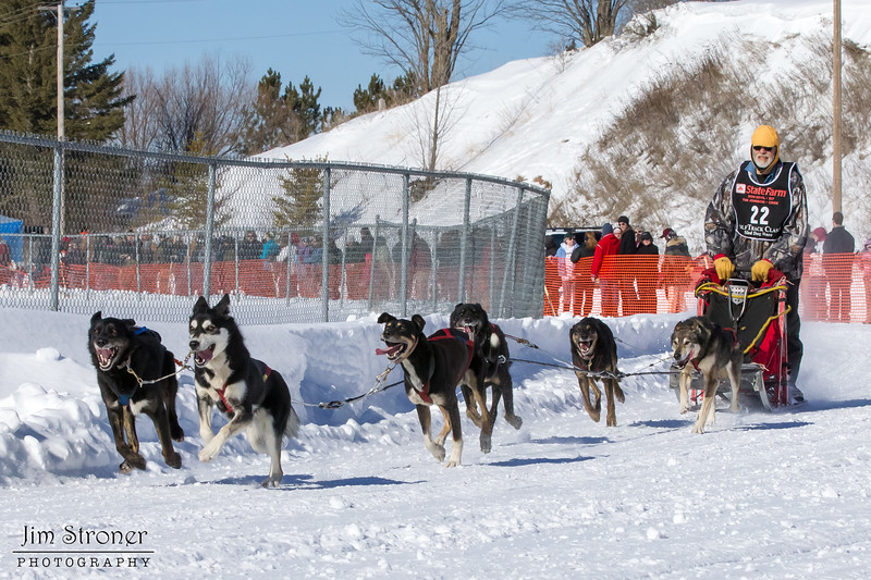 Linux Meyer's 6-dog team near the start of the 2013 WolfTrack Classic
