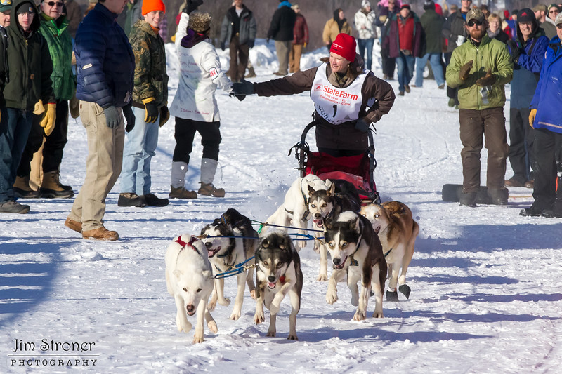 Rhonda Heerschap's 10-dog team near the start of the 2013 WolfTrack Classic