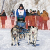 Steve Rasmussen's 10-dog team near the start of the 2013 WolfTrack Classic