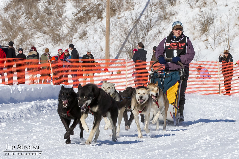 Theo Theobald's 6-dog team near the start of the 2013 WolfTrack Classic