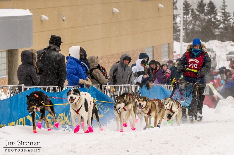 Alex LaPlante at start of 2014 John Beargrease Mid-Distance race