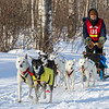 Andrew Heskin near Tofte at the 2014 John Beargrease Mid-Distance race