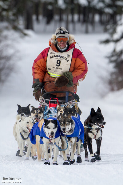 Billy Snodgrass Devil Track lake during the 2014 John Beargrease Marathon race