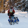 Billy Snodgrass near Caribou Road crossing during the 2014 John Beargrease Marathon race