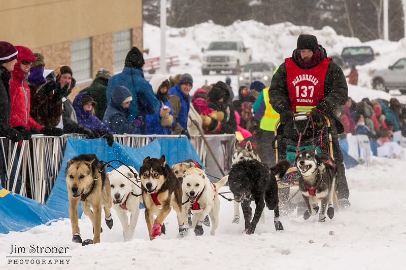Brian Wiese at start of 2014 John Beargrease Mid-Distance race