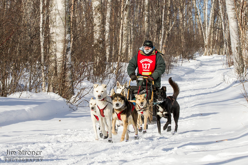 Brian Wiese near Tofte at the 2014 John Beargrease Mid-Distance race