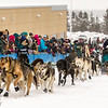 Cindy Gallea at start of 2014 John Beargrease Marathon race