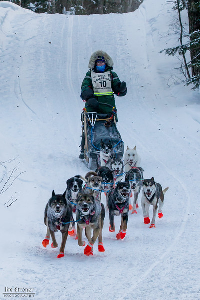 Colleen Wallin near Caribou road crossing during the 2014 John Beargrease Marathon race