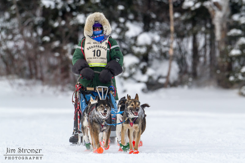Colleen Wallin on Devil Track lake during the 2014 John Beargrease Marathon race
