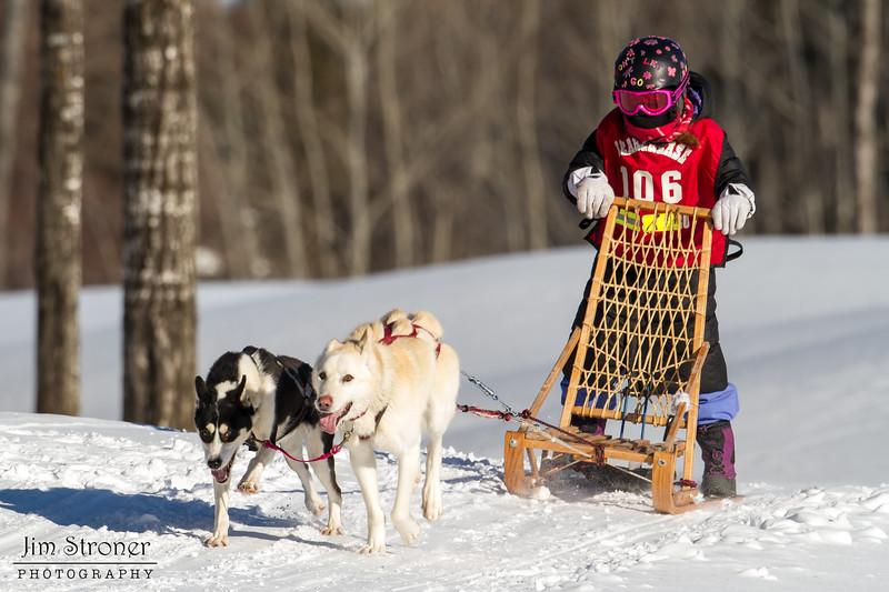 2014 Beargrease Cub Race