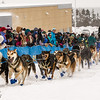 Denis Tremblay at start of 2014 John Beargrease Marathon race