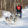 Dusty Klaven near Tofte at the 2014 John Beargrease Mid-Distance race