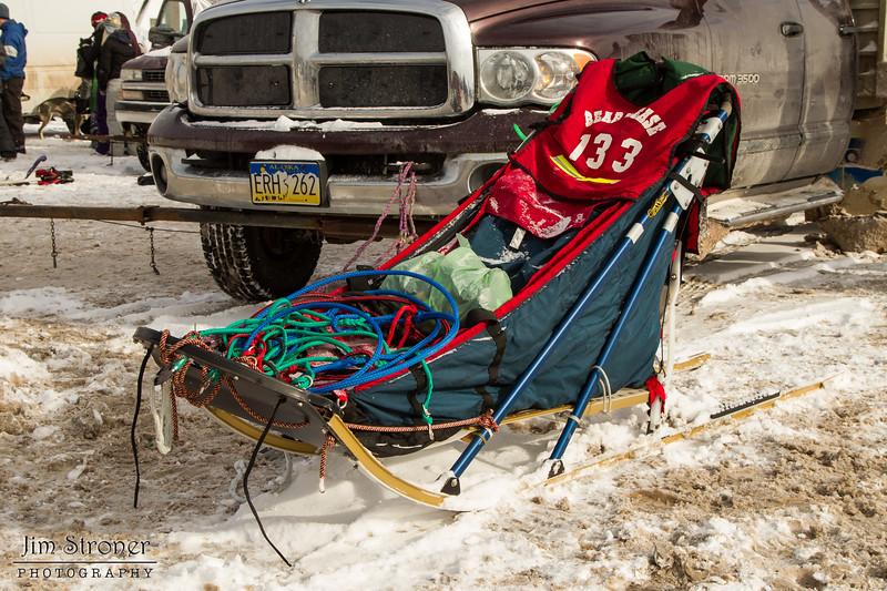 Elizabeth Nelson's 2014 John Beargrease Mid-Distance sled