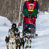 Elizabeth Nelson near Tofte at the 2014 John Beargrease Mid-Distance race