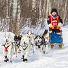 Emily Meyer near Tofte at the 2014 John Beargrease Mid-Distance race