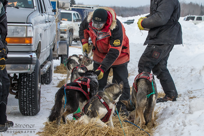 Keith Aili feeding his team at the Devil Track lake checkpoint during the 2014 John Beargrease Marathon race