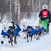 Leanne Bergen near Tofte at the 2014 John Beargrease Mid-Distance race