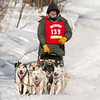 Mike Hoff near Tofte at the 2014 John Beargrease Mid-Distance race