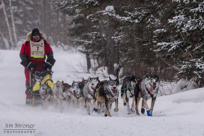 Nathan Schroeder near Laine road crossing during the 2014 John Beargrease Marathon race