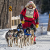 Nathan Schroeder near Fox Farm road crossing during the 2014 John Beargrease Marathon race